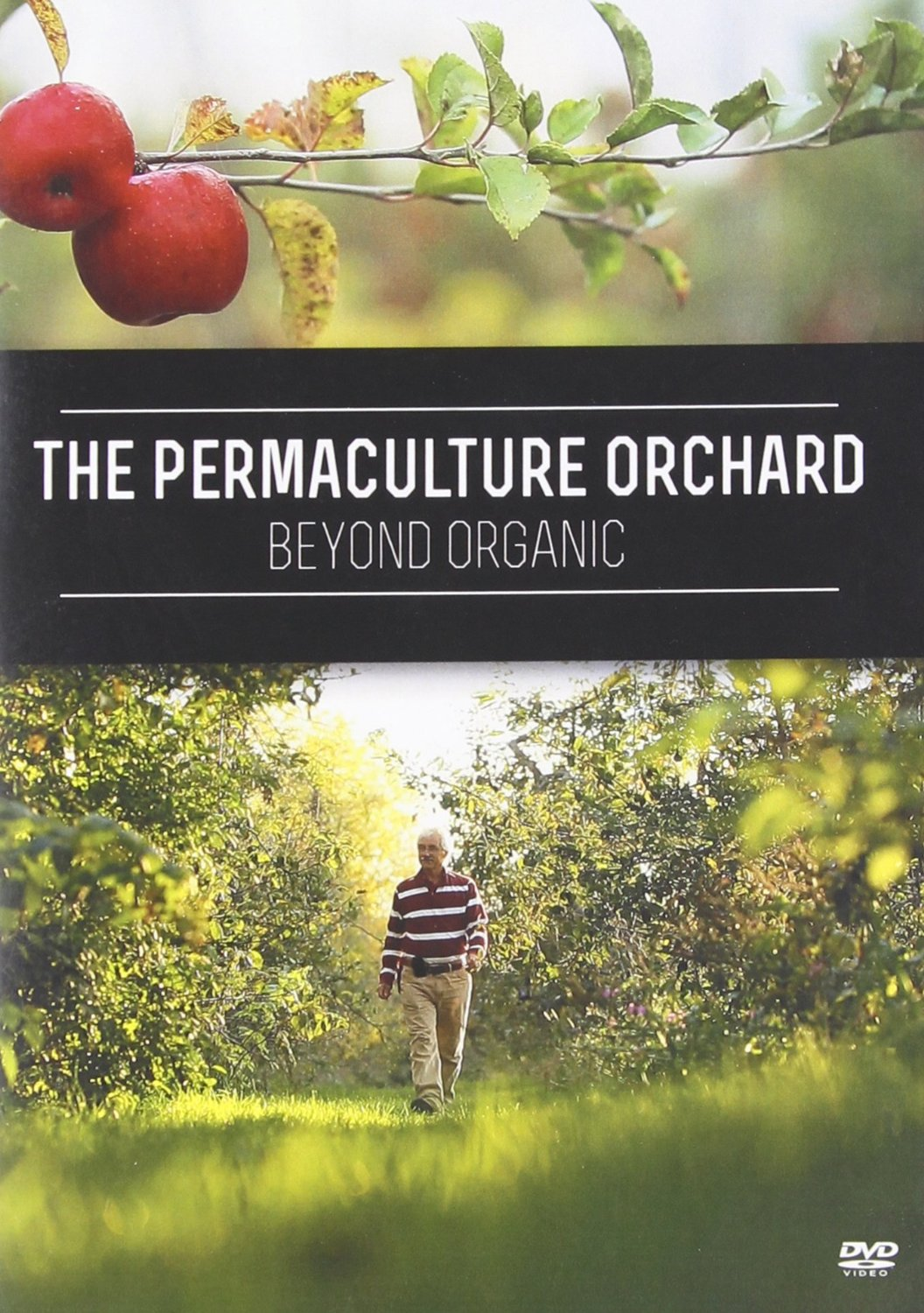 beyond the orchard Get this from a library beyond the orchard : essays on the martyrology [roy miki fred wah.