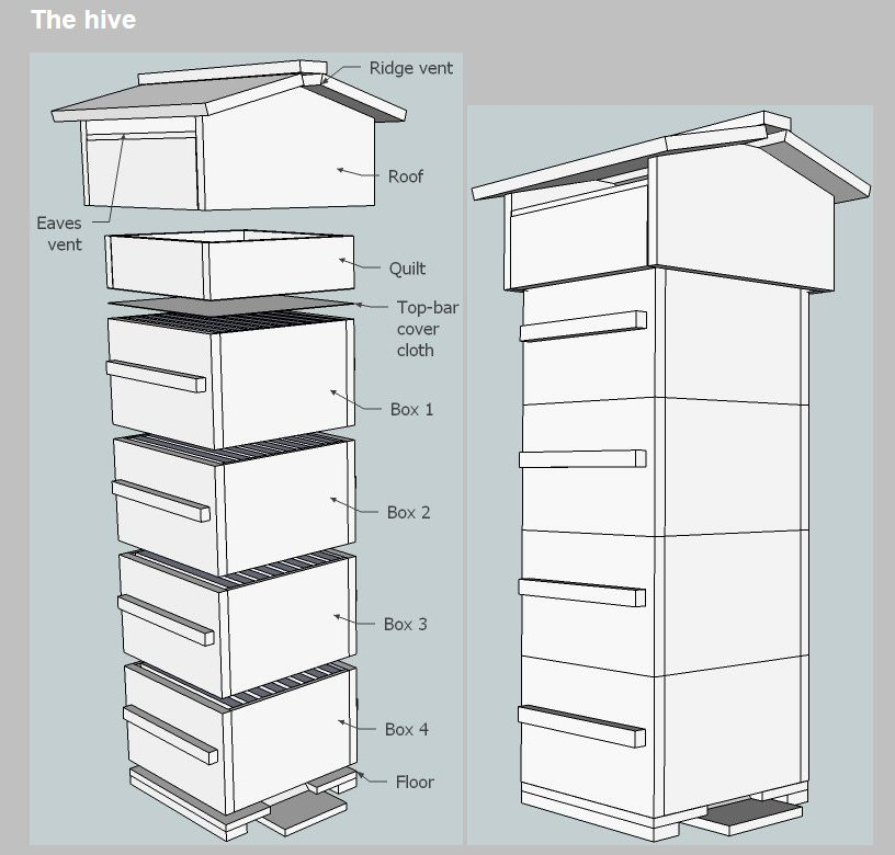 Start With the Warre Hive Design