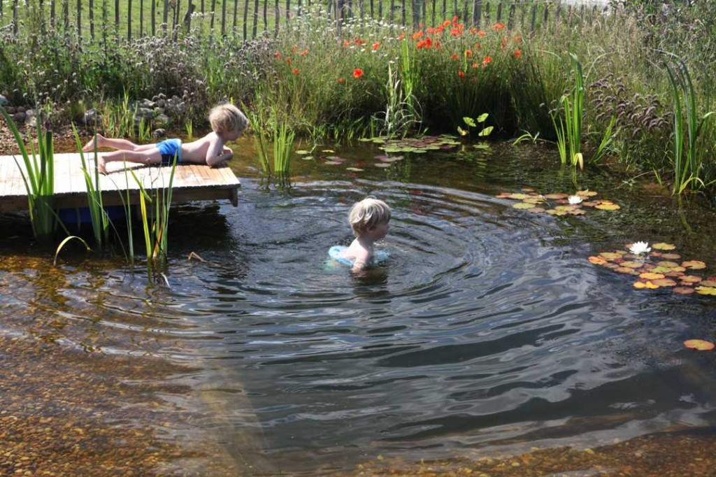 Small Natural Pool Designs image result for small natural pool designs Image David Pagan Butler Organicpoolscouk