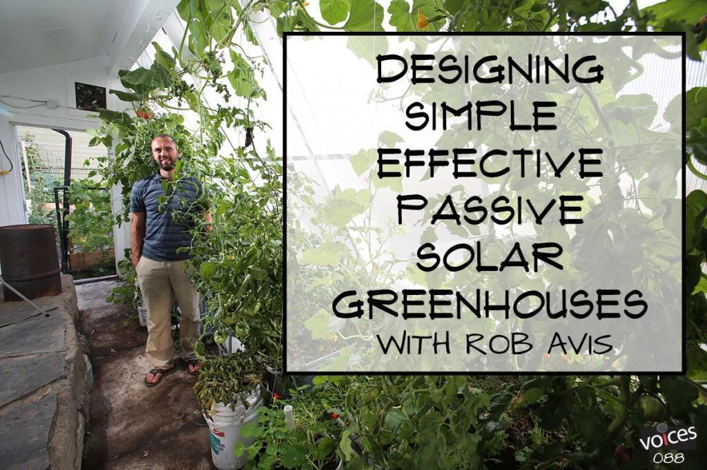 Rob Avis Permaculture Voices