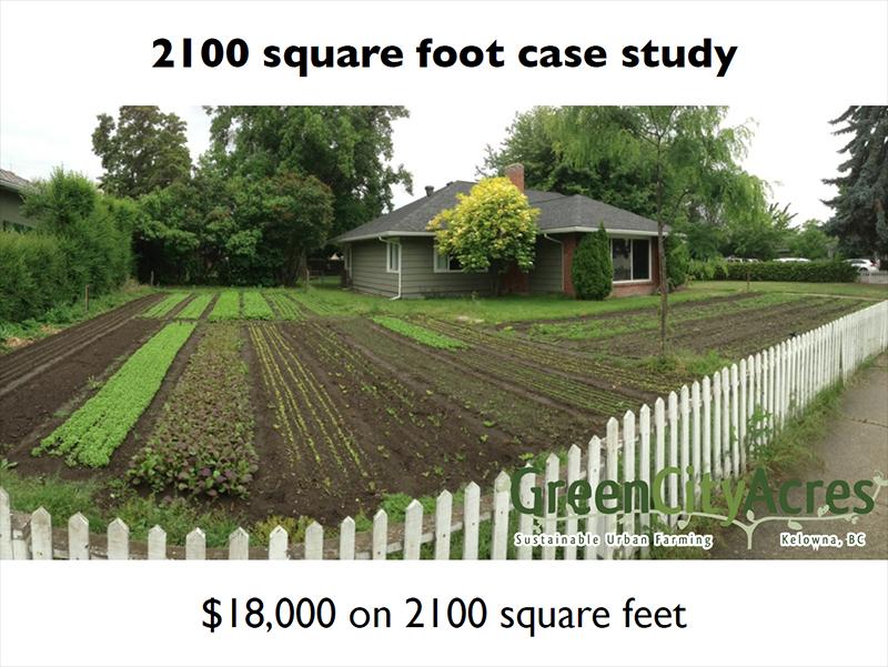Urban Farming Case Study