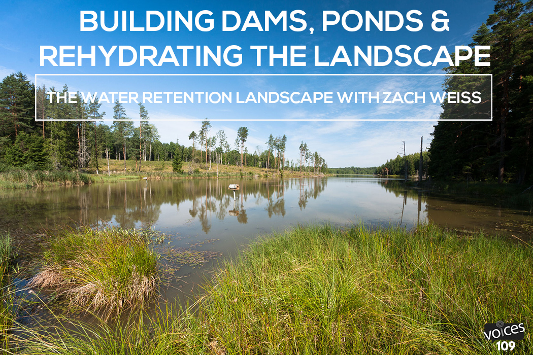 Building dams ponds and rehydrating the landscape the for Pond dam design