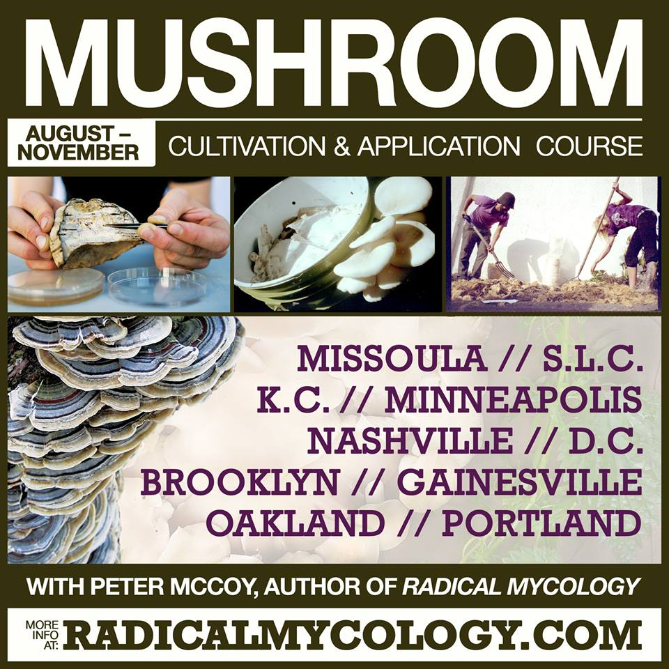 Radical Mycology Course